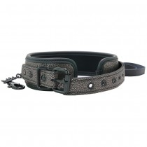 Elegant Collar with Leash in Grey